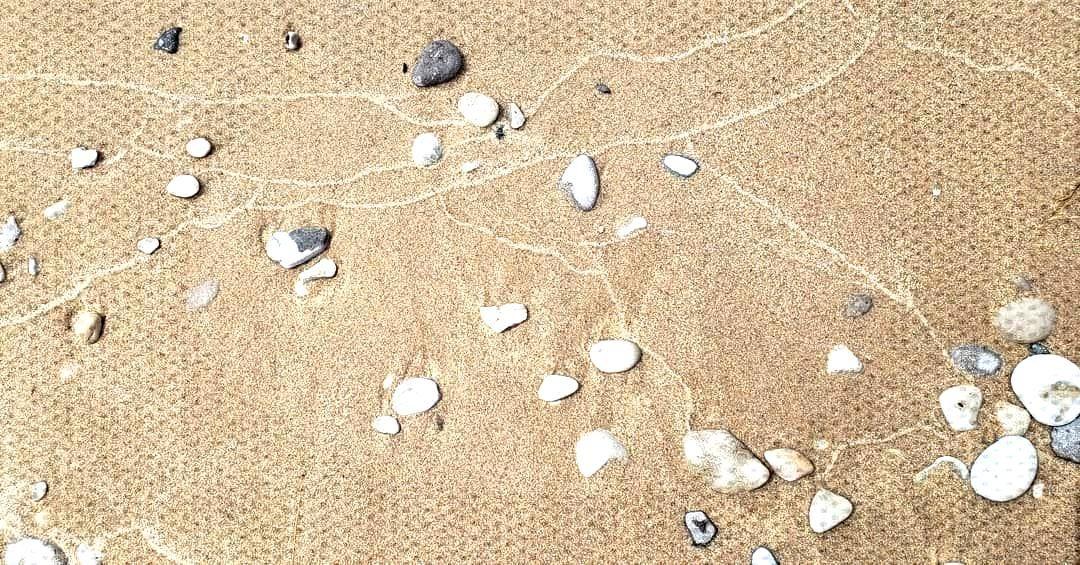 Otter Creek Beach. Empire, Michigan, USA. . . .