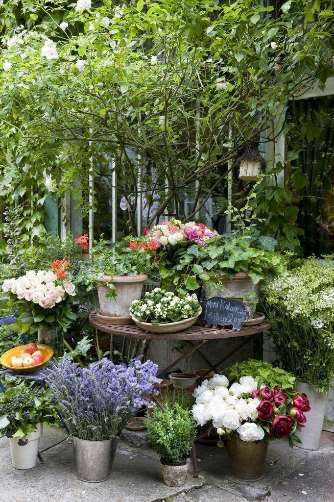 marie paule faure nostalgie pivoines et petits plaisirs pas chers plantes fleurs jardins. Black Bedroom Furniture Sets. Home Design Ideas