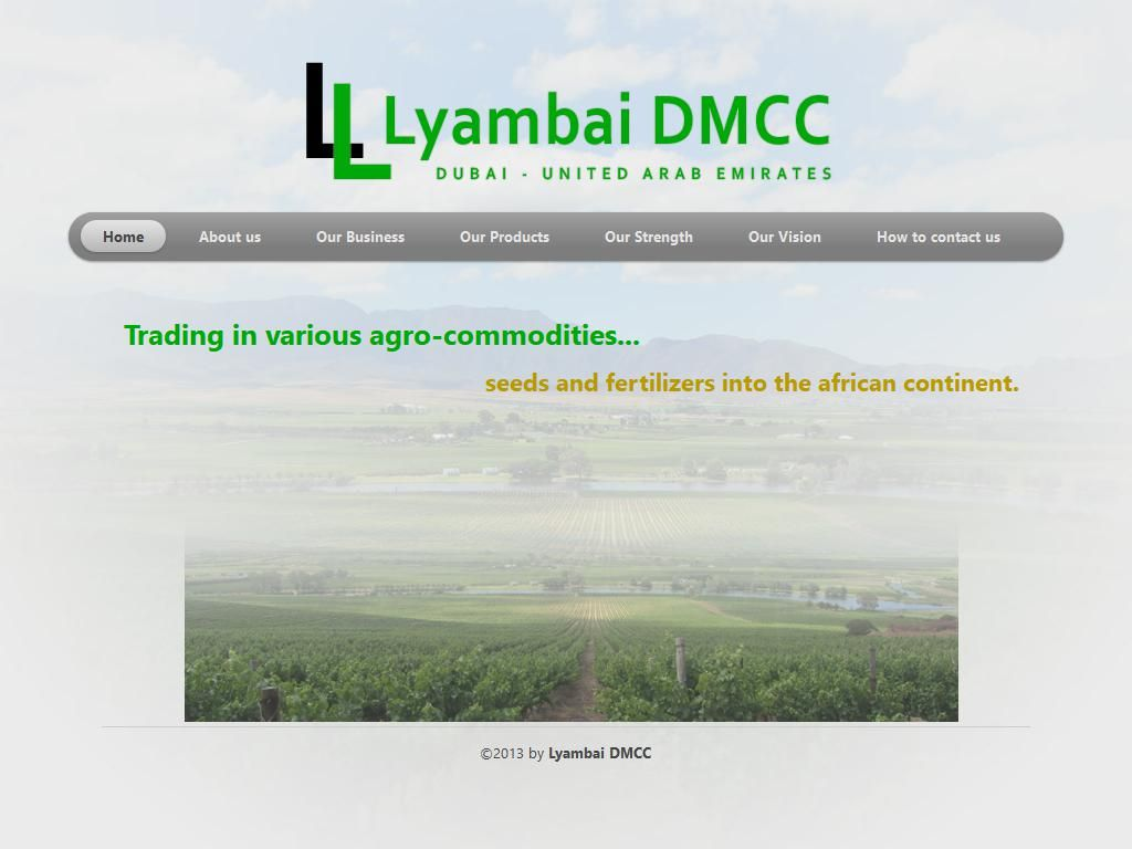 Lyambai Dmcc Trading Company Silver Tower, I1, Cluster I