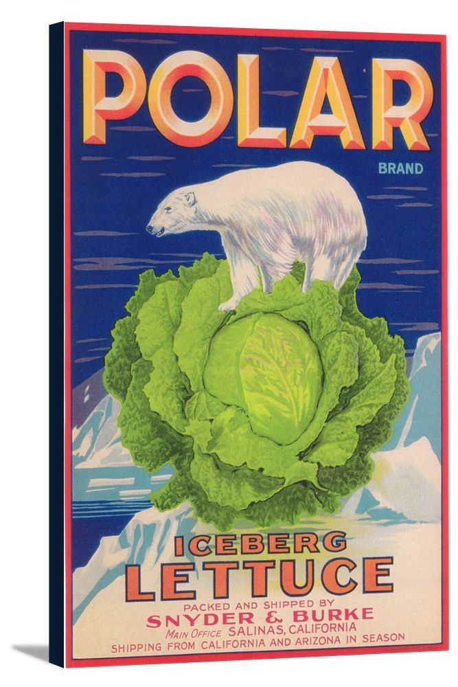 Crate Label Bunny White Rabbit Vegetables California Vint Poster Repro FREE SH