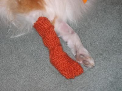 Pattern for crocheted or knitted dog booties dog booties crochet pattern for crocheted or knitted dog booties dog booties crochet and patterns dt1010fo