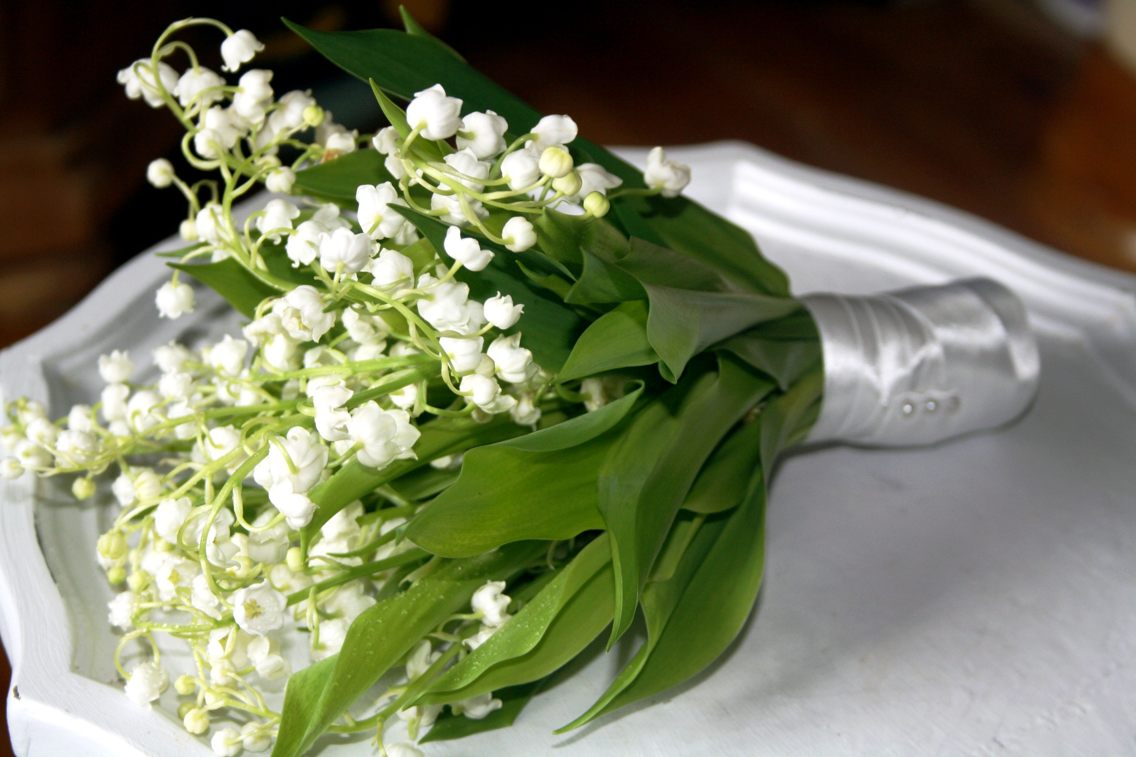 Small Flower Girl Bouquets The Flower Girl Posy Tied With A