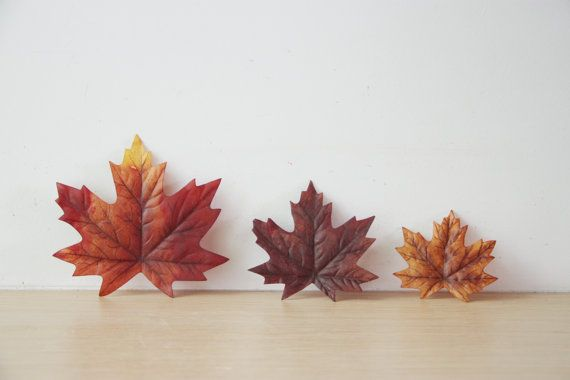 Hey, I found this really awesome Etsy listing at https://www.etsy.com/listing/461060914/maple-brown-leaves-autumn-leaves
