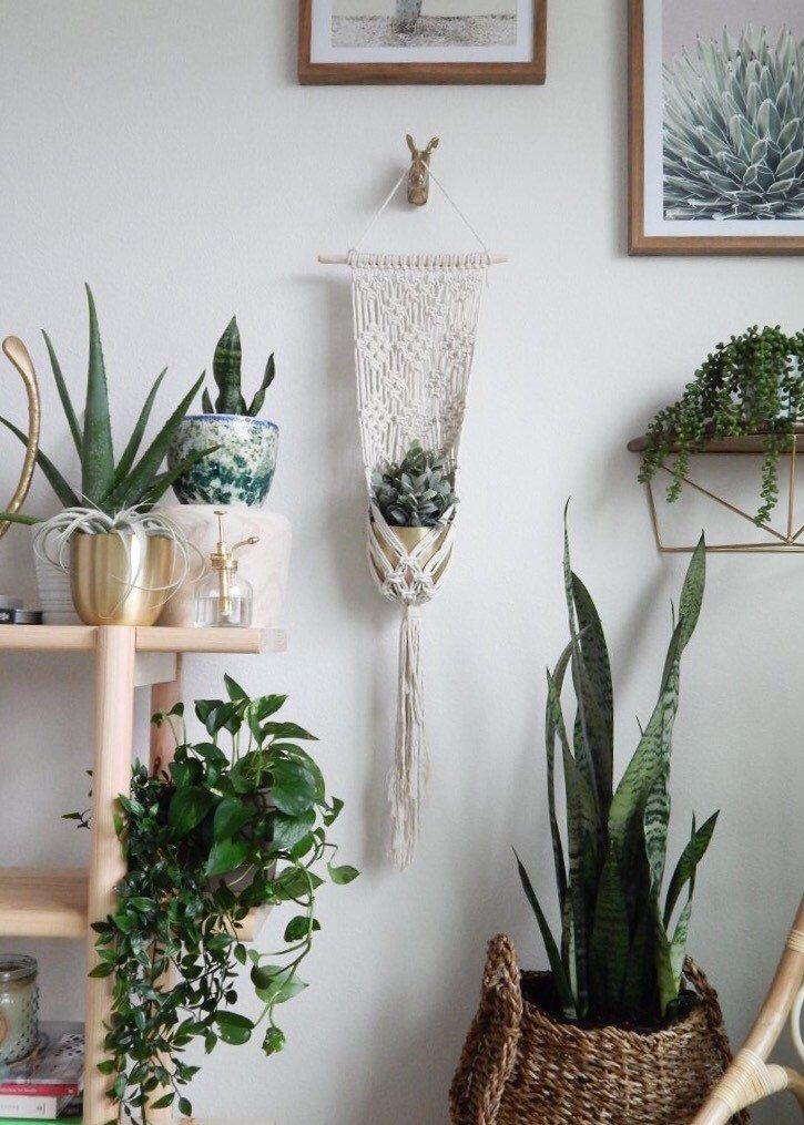 Hanging planter indoor macrame plant hanger plant stand