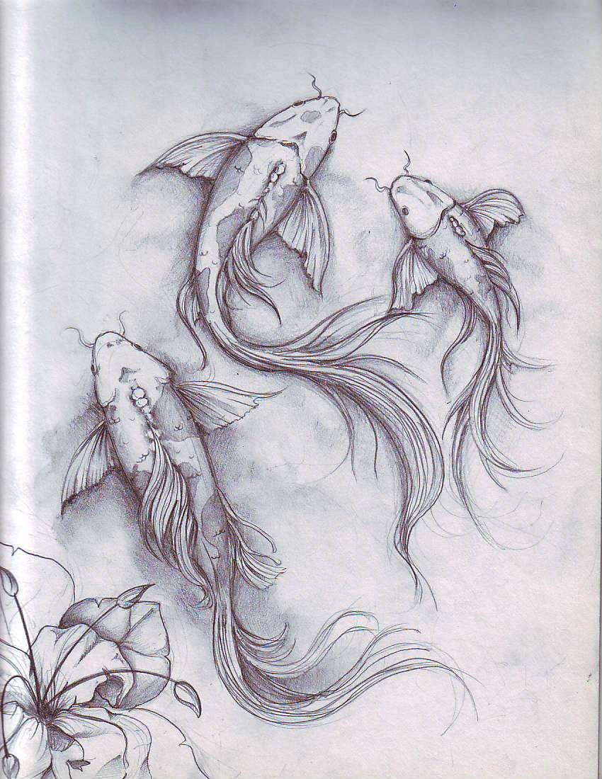 Koi fish sketch szukaj w google art references for Coy fish drawing