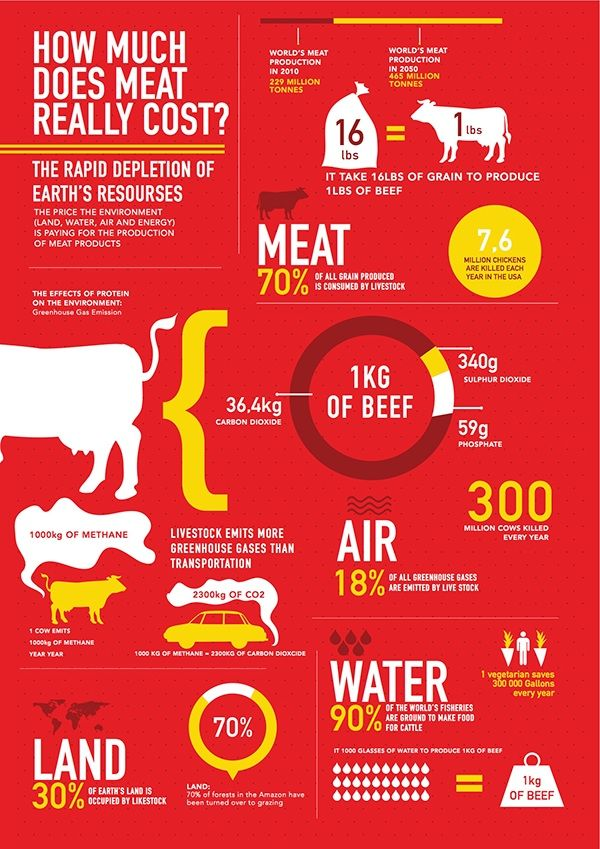 Infographic - How Much Does Meat Really Cost? on Behance ...