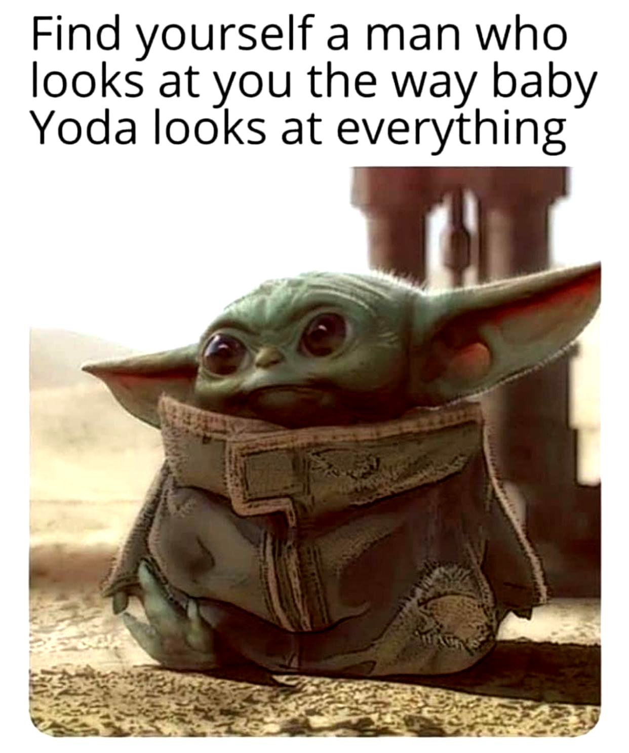 Pin By Chrisinde Pereira On Funny In 2020 Yoda Meme Funny Memes Funny Relatable Memes