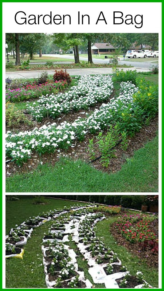 17 Best 1000 images about Garden Bag Gardening on Pinterest Gardens