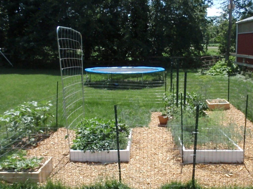 Squarefoot Gardening Tomato Saports | Square Foot Garden 6 17 12 Support  For The