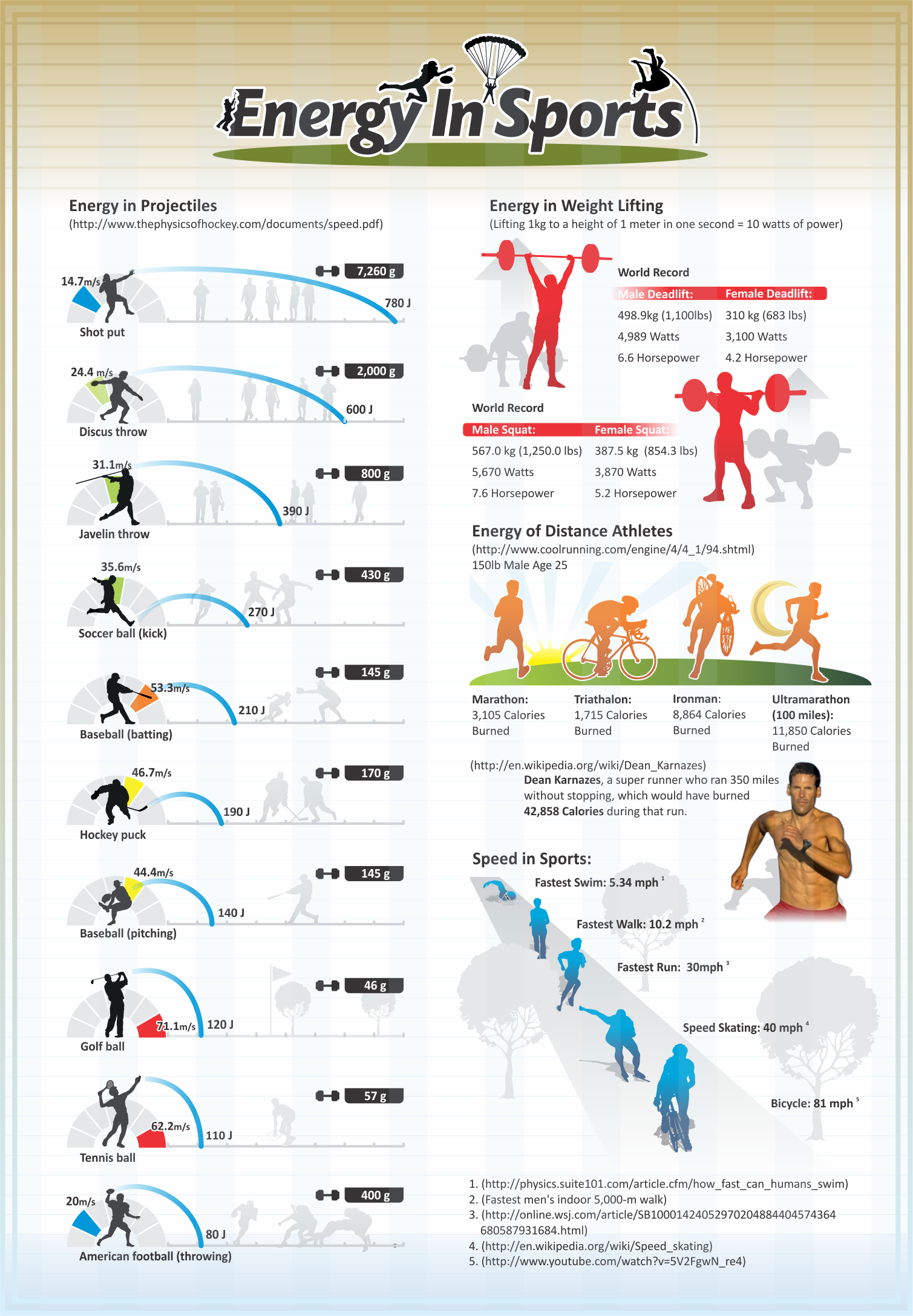 biomechanics of sport and exercise mcginnis pdf