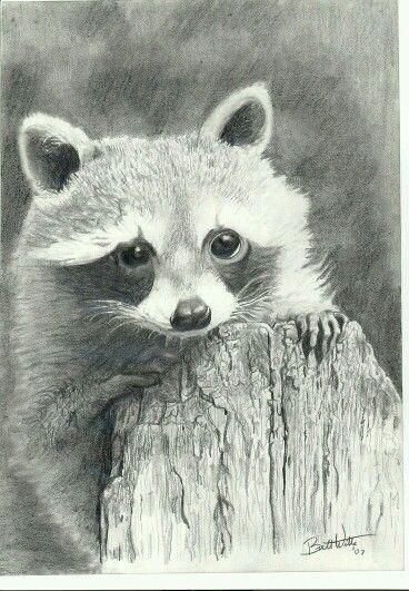 Animaux | Ceruzarajz | Pinterest | Las artes, Me gustas y Animales