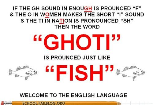 English 102 Not Lol Words Funny Quotes Just For Laughs