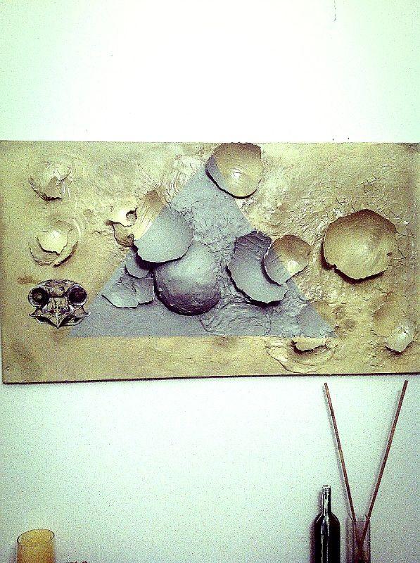 Plaster shells, owl skulls and a geometry.