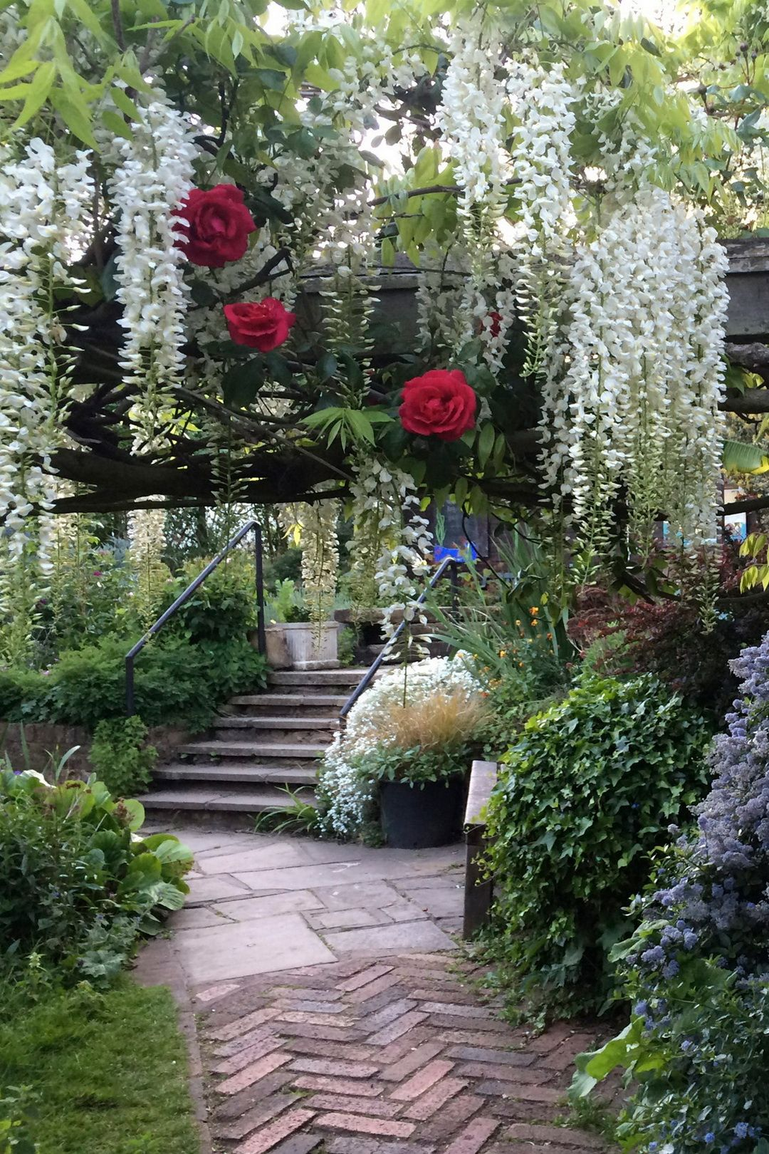61 Magical Secret Garden Paths Dream Garden