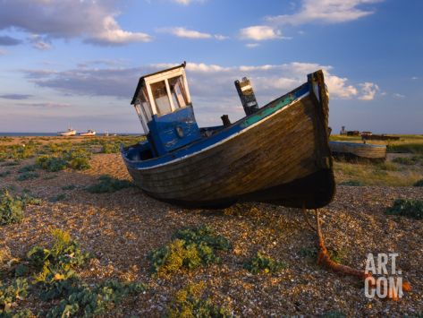 Wrecked Fishing Boat on Shingle Beach, Dungeness, Kent, England, United Kingdom, Europe Photographic Print by Stuart Black at Art.com