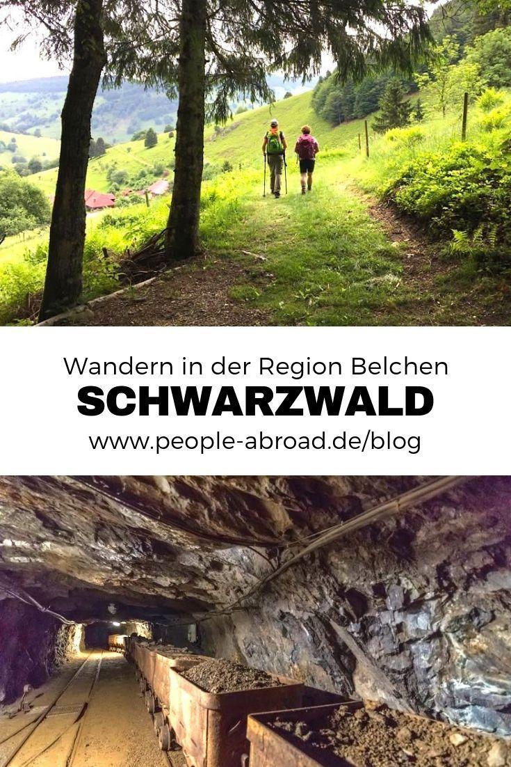 Belchen Wandern In Der Schwarzwald Region Wandern Schwarzwald Reisen Schwarzwald