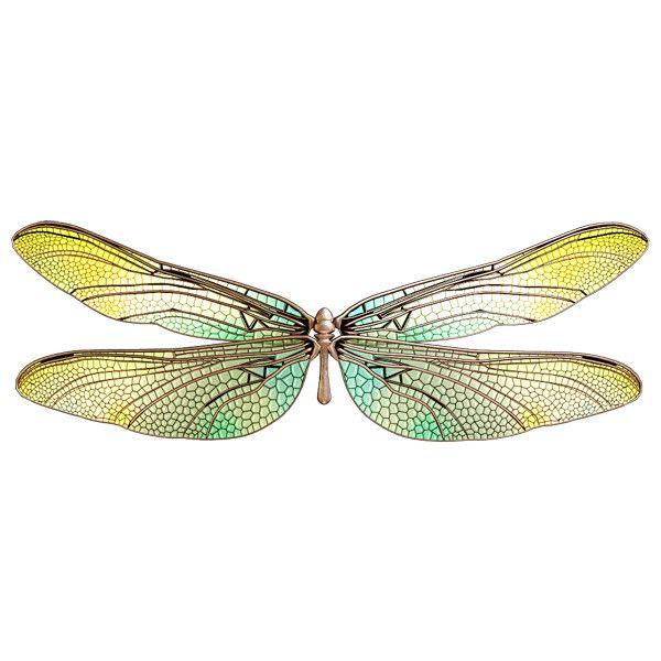 Sslisa Dragonflies Wings Png Wings Png Dragonfly Wings Wings