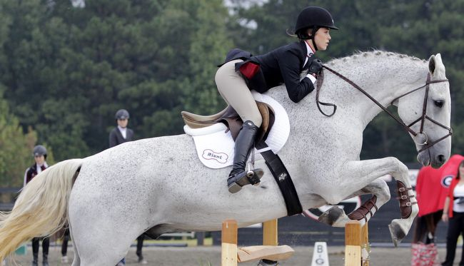 Bad Equitation Over Fences