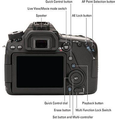 Your Canon 80d Camera Has So Many Features That It Can Be Difficult To Remember What Each Contr Digital Camera Photography Canon Digital Camera Camera Tutorial