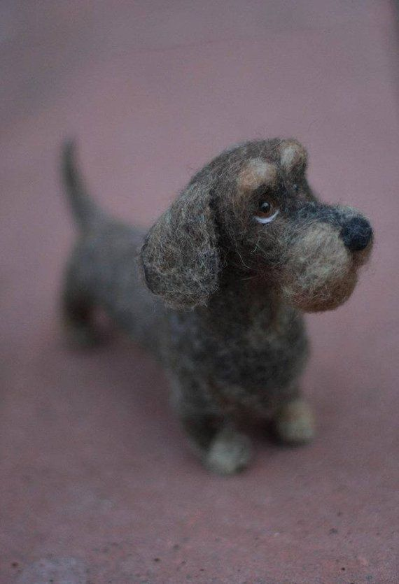 Wirehaired Dachshund Aus Wolle Needle Felted Wirehaired Dachshund