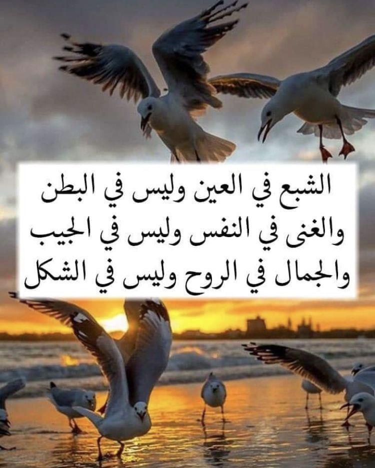 Pin By Aisha On عبارات اقتباسات كلام عن الصداقه Arabic Quotes Birthday Quotes Inspirational Book Qoutes