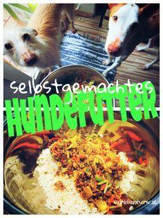 Hundefutter selbst gemacht: Ab und an zaubere ich etwas Leckeres für meine Hunde // ingridsuniverse.wordpress.com