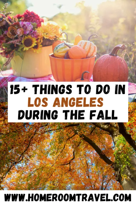 Fall In Los Angeles Has So Many Fun And Cheap Things To Do It Is A Great Time To Be Outdoors And Soak Up The Last In 2020 Cheap Things