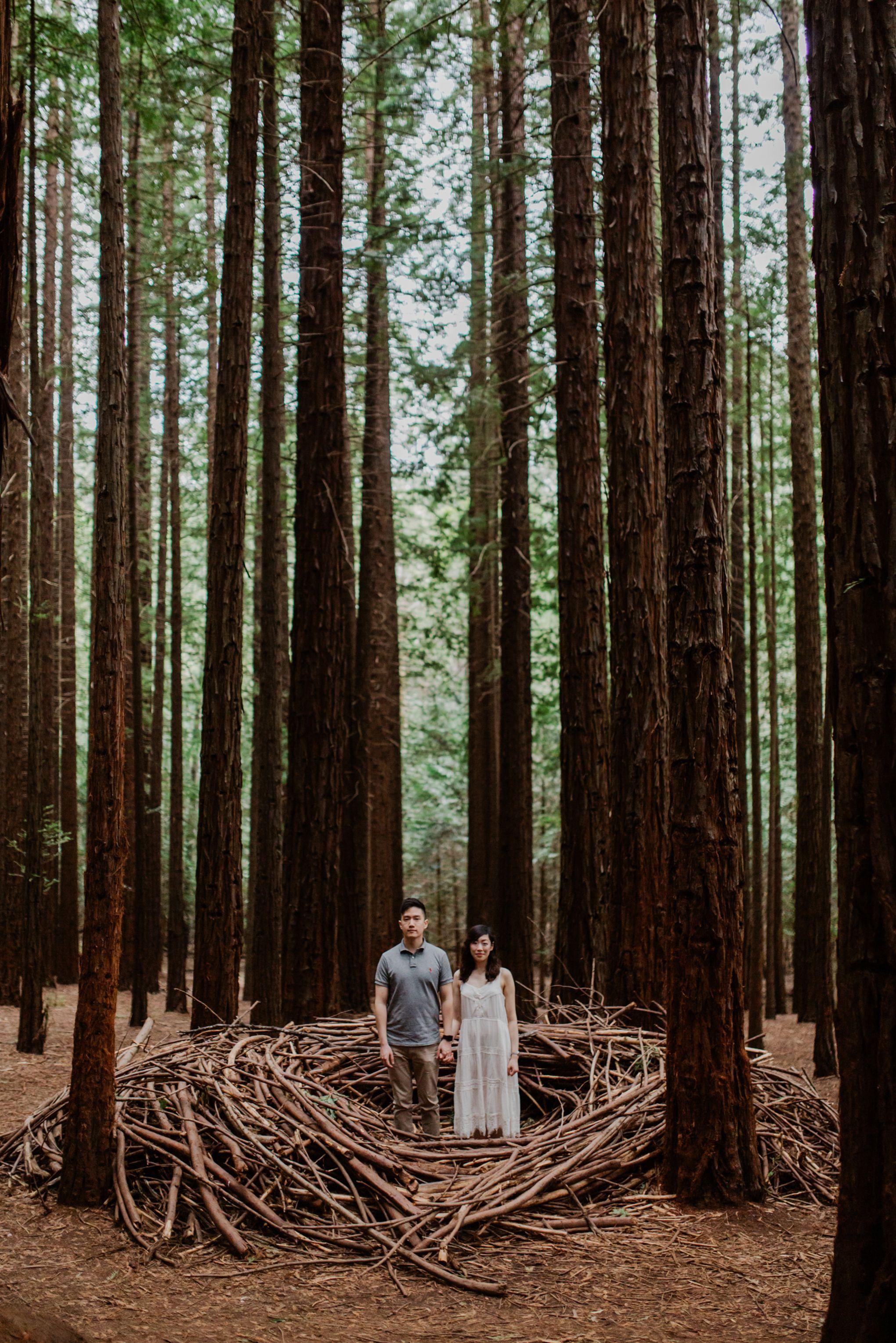 Marvelous Redwood Forest Wedding Anniversary in Warburton