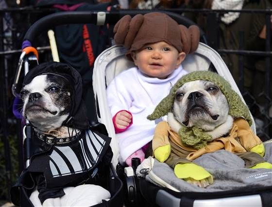 This is your mom's brain on babies — and dogs. Science shows the love