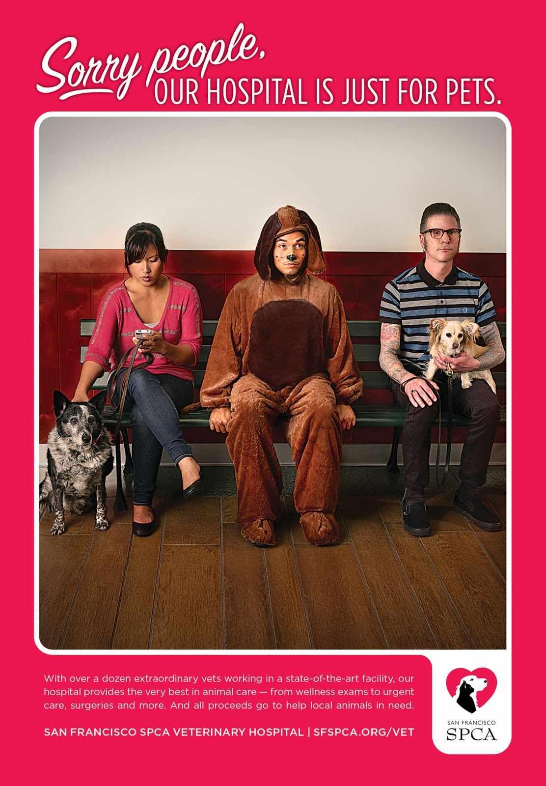San Francisco SPCA Waiting Room Advertising, Funny ads