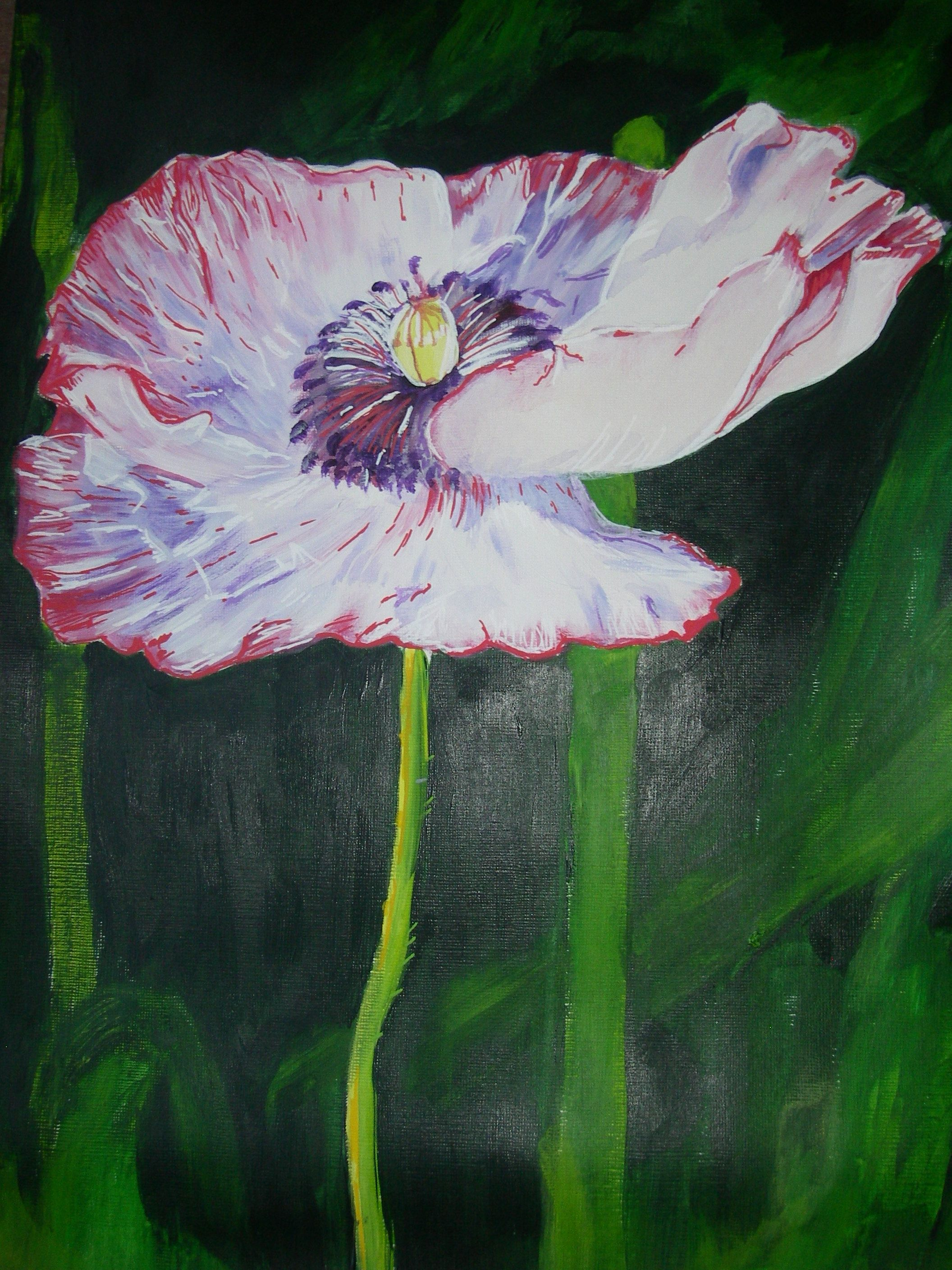 Poppy.  Painted by Geer, the Netherlands