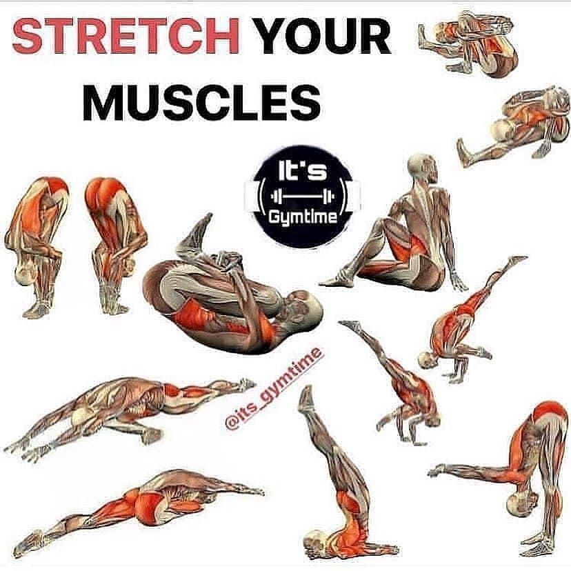 Stretch your muscles 👍 @its_gymtime  Follow @workout__important ➖➖➖➖➖➖➖➖➖➖ #fitness#gym#bbg#body#bod...