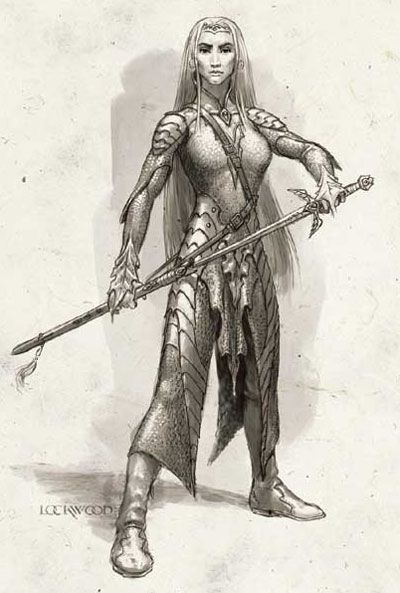 Storm Silverhand, Bard of Shadowdale -Todd Lockwood