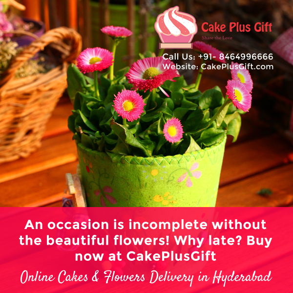 Online Cakes Flowers Delivery In Hyderabad CakePlusGift Call Us 91