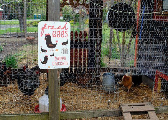 Chicken Coop Sign  Fresh Eggs From Happy by BainbridgeFarmGoods, $34.95