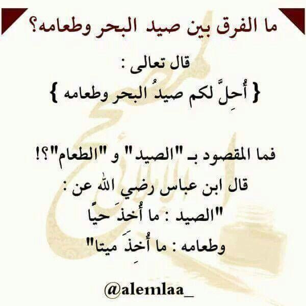 ما الفرق بين صيد البحر وطعامه Islamic Quotes Quran Tafseer Quotes