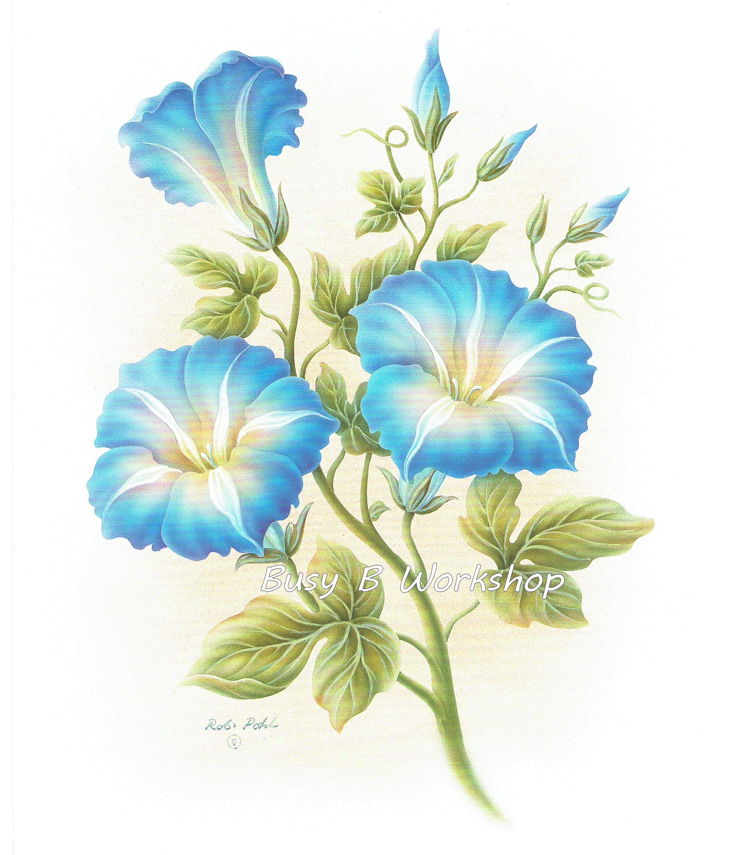 morning_glory Flower painting, Watercolor flowers