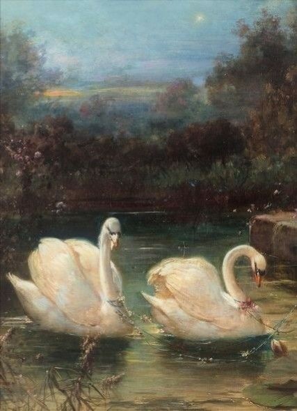 Image result for swan in renaissance painting