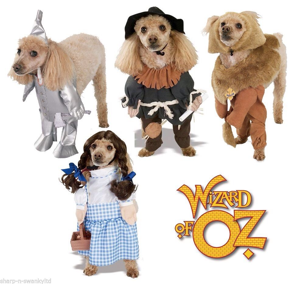 Officially Licensed Wizard Of Oz Pet Costumes Dorothy Cowardly