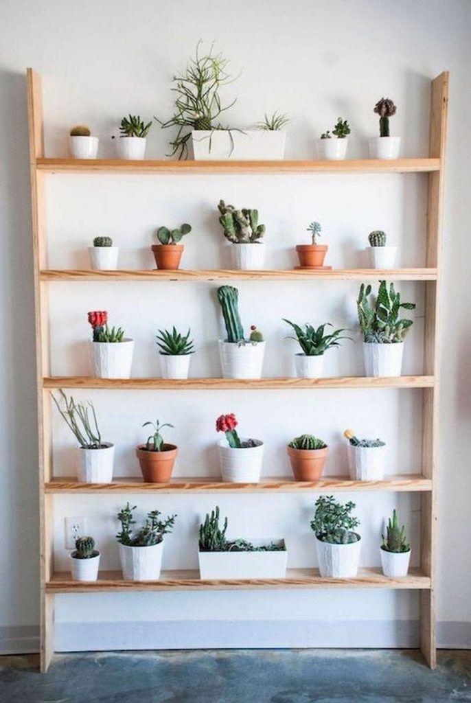 Ev İçi Bahçe Tasarımlarına 12 Başarılı Örnek #apartmentgardening
