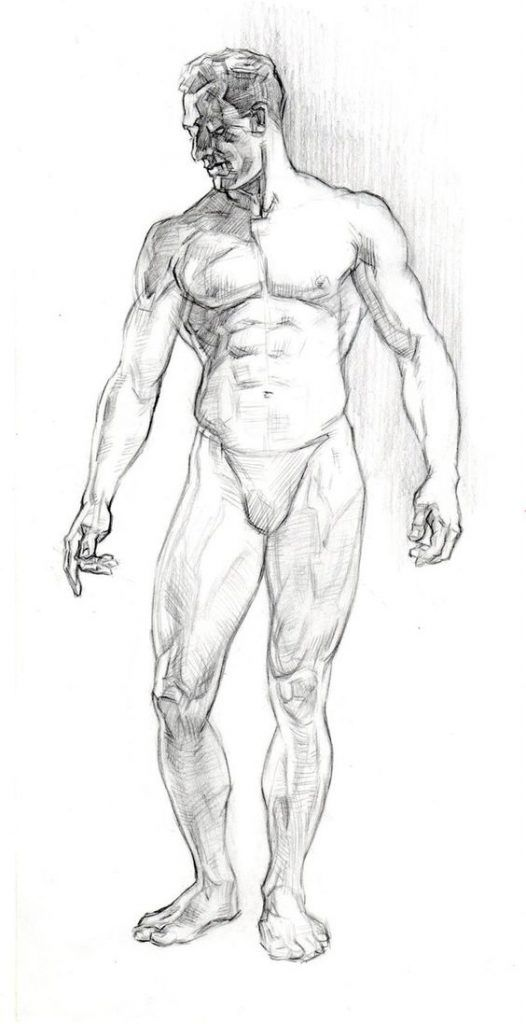 Character Design Collection Male Anatomy Daily Art Anatomy