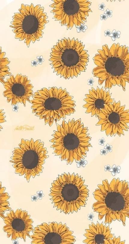 30 Aesthetic And Vintage Iphone Wallpaper Ideas Sunflower Wallpaper Sunflower Iphone Wallpaper Iphone Wallpaper Vsco Aesthetic pastel vintage iphone