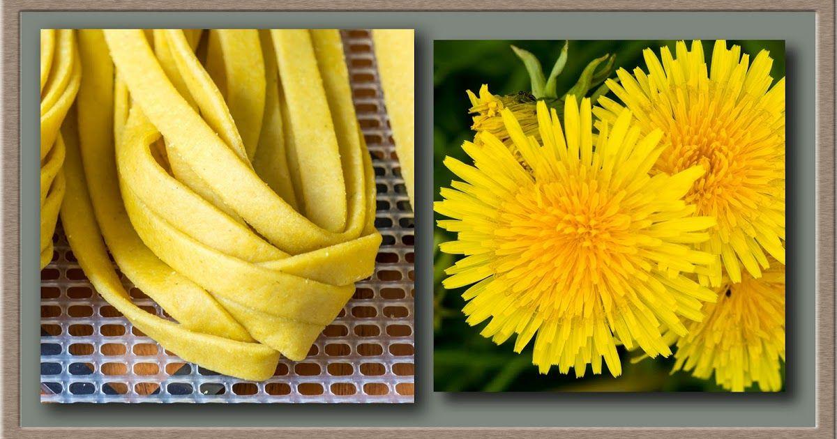Foraging for Wild, Natural, Organic Food: Dandelion Recipe - Dandelion Flower Pasta