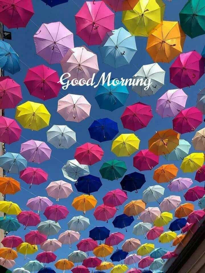 Morgen   Bilder und Fotos   Morning pictures, Good morning ...