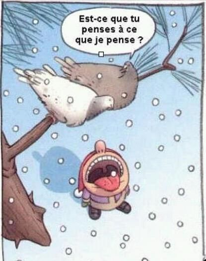 """Je lai toujours dit! Le pigeon est fourbe! - """"is it thinking what I'm thinking?"""" more funny things: http://hotfunnystuff.com"""