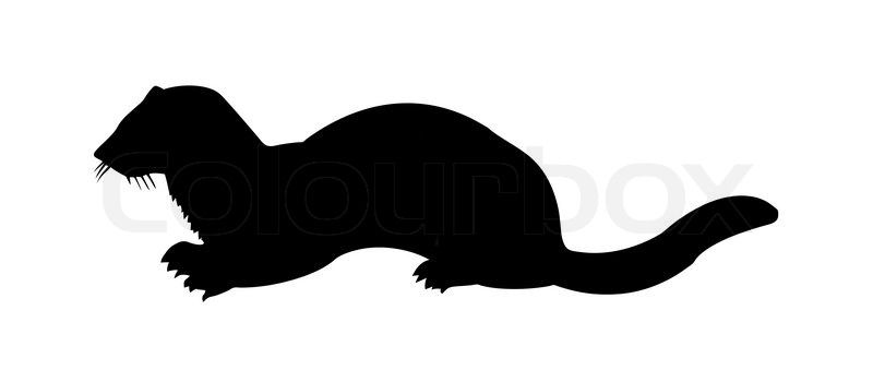 Weasel Silhouette Vector Silhouette Of The Marten On White Background Vector Colourbox Animal Silhouette Silhouette Vector Otter Art