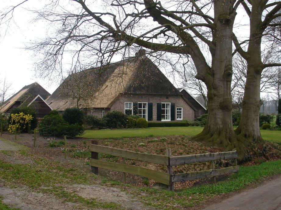 Reestdal monumentale-boerderij.jpg (922×691)
