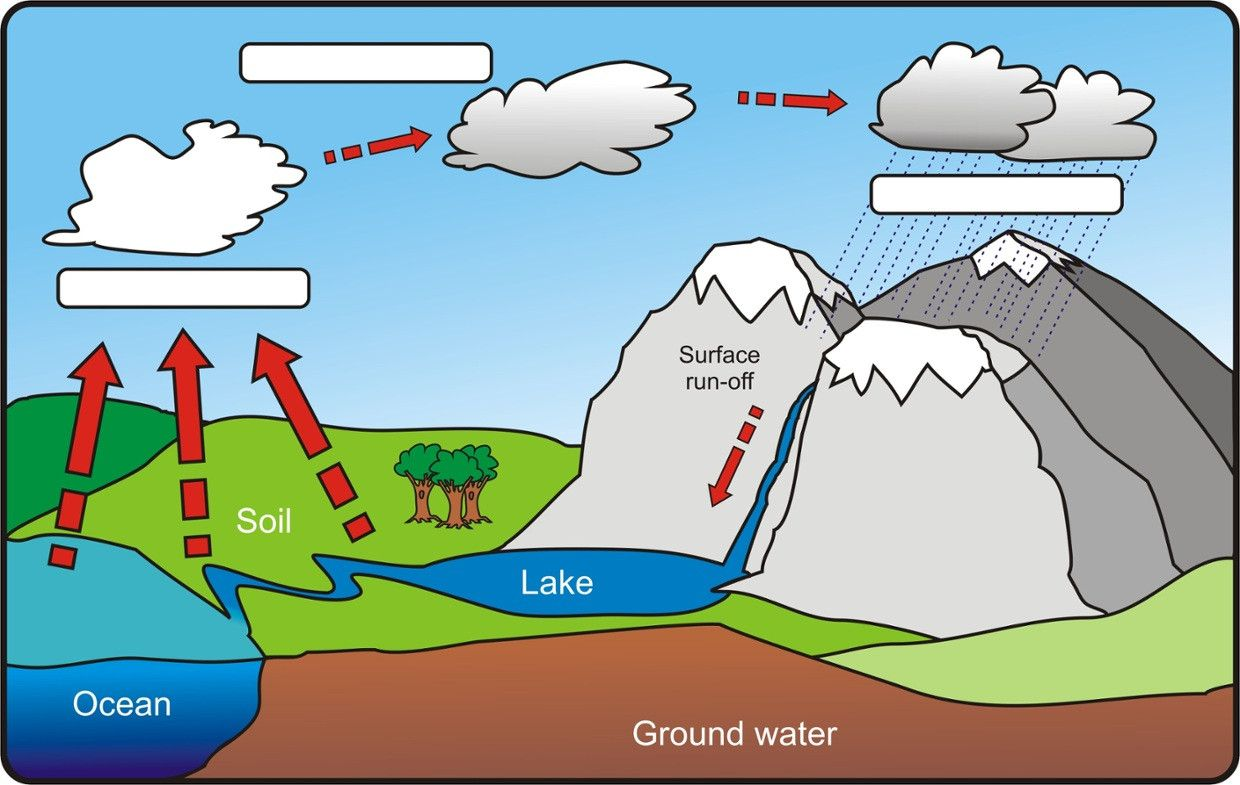 Water Cycle Pictures With Labels Unique The Water Cycle Cycle Pictures Water Cycle Water Cycle Worksheet