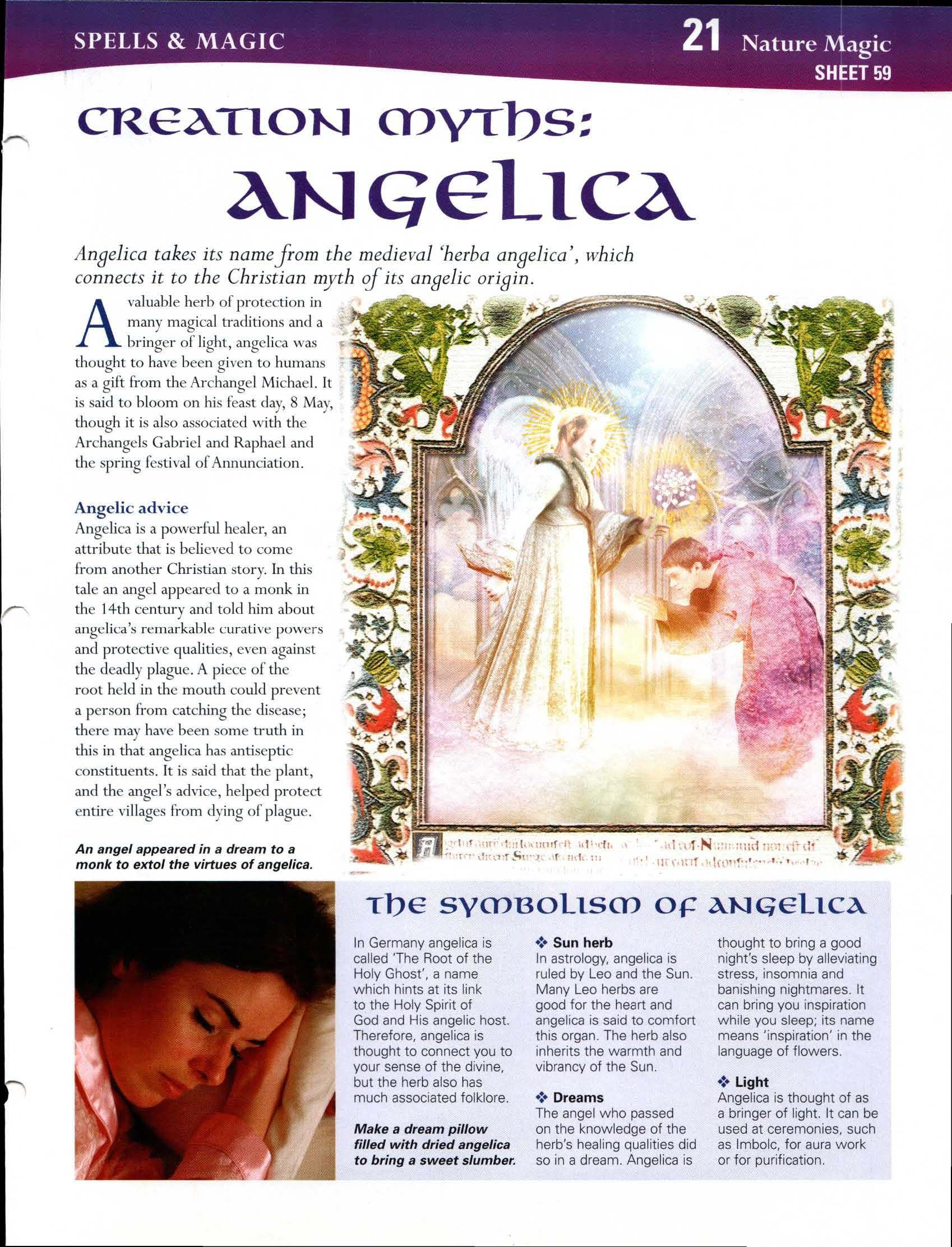 Creation Myths: Angelica | Magical History and Stories | Creation
