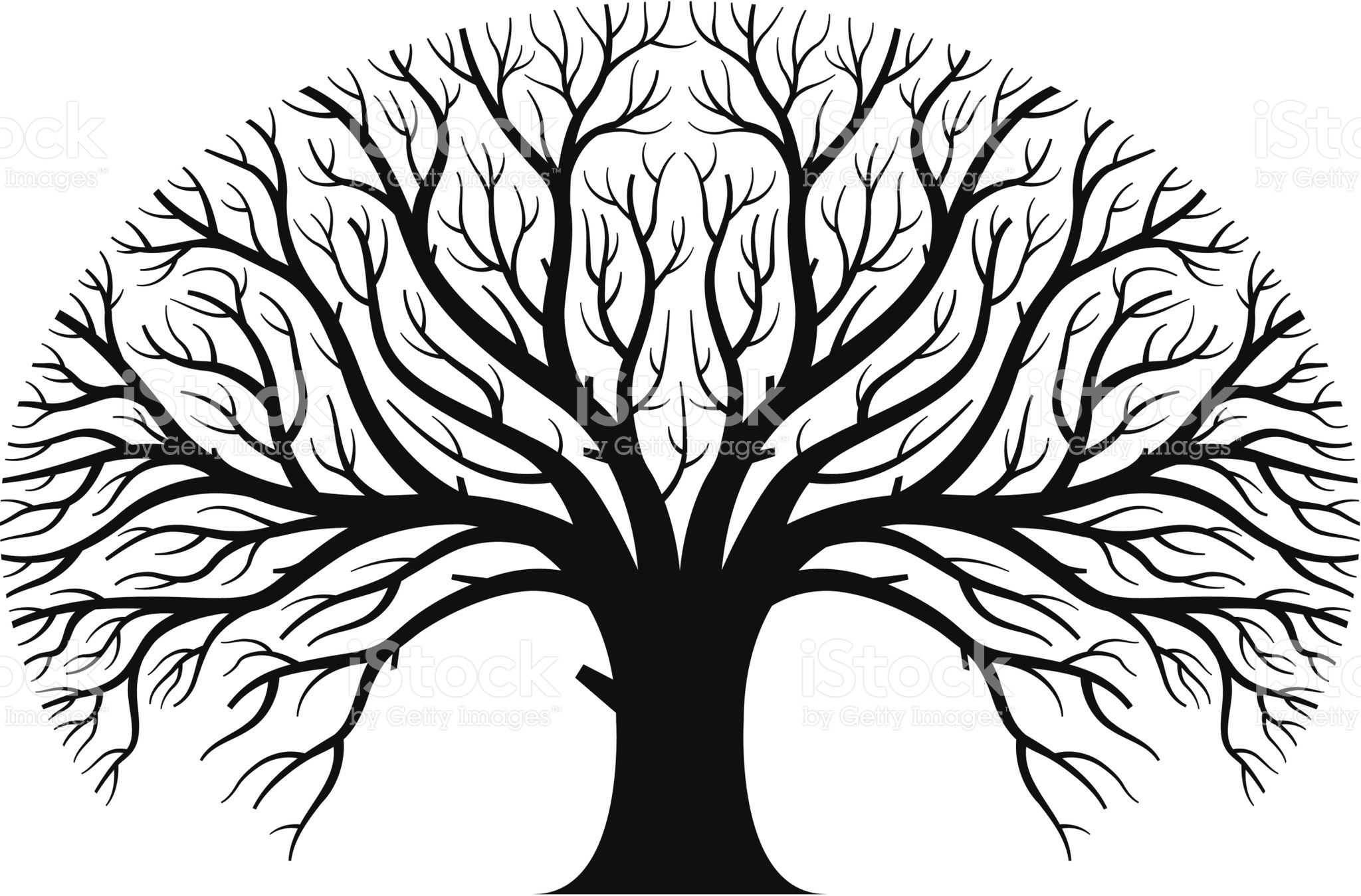 Free Spreading Pics a large spreading tree in silhouette. | vector art, free